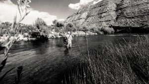 fly fishing on the strawberry river utah