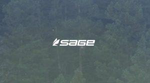 """Sage """"Trout Season"""""""