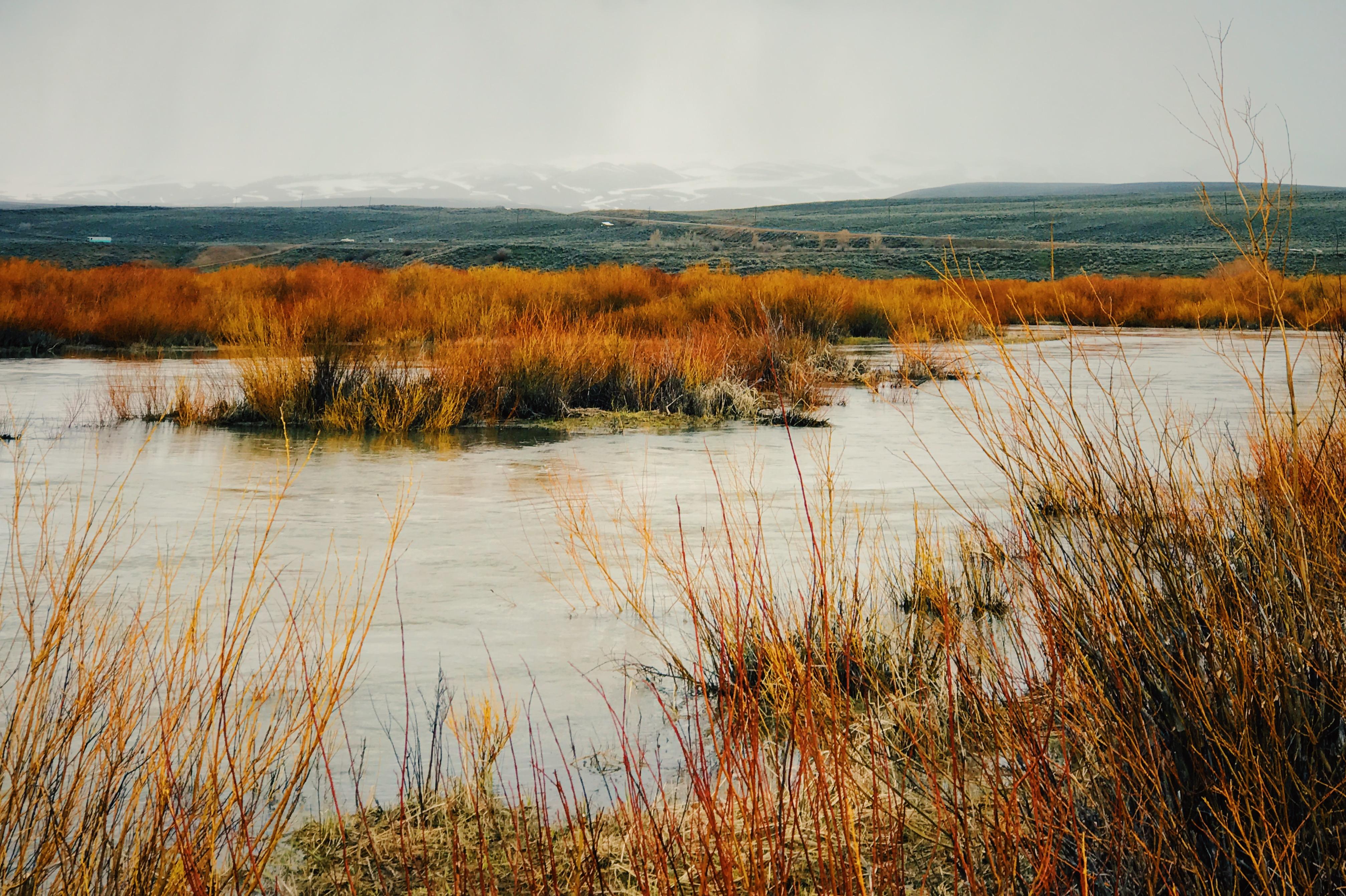 Remote Streams in Park City Utah