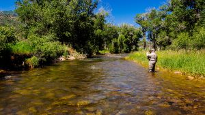 remote streams in park city utah