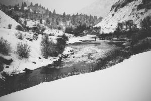 Winter Fly Fishing in Park City, Utah